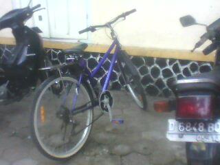 Dolpin ungu lagi merapat di parkiran Stasiun