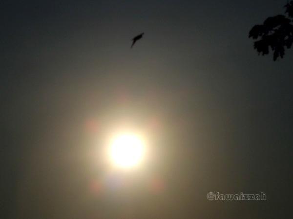 Menantang Matahari