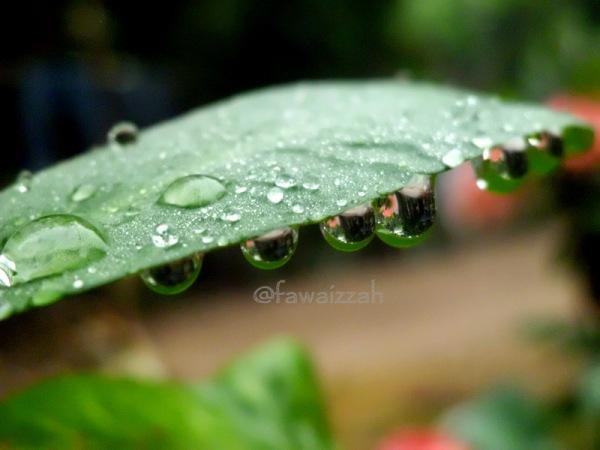 Sisa Hujan #2